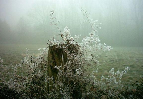 Winterzauber....