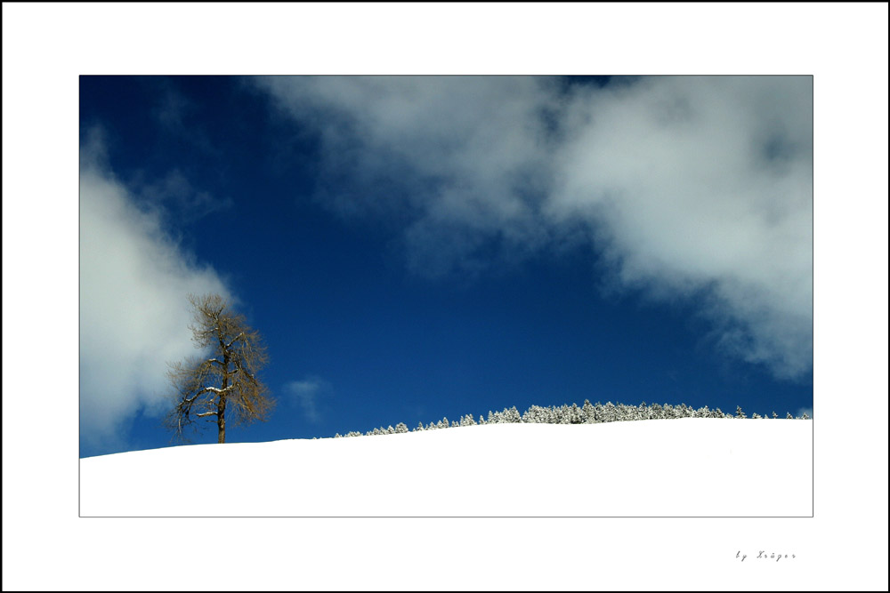 Winterzauber-2-