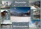 ::. Winterzauber .::