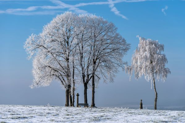 *Winterzauber*