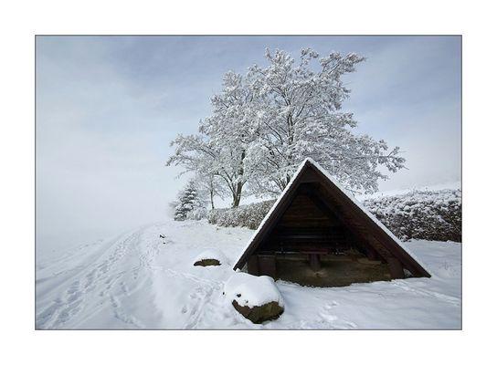 - Winterzauber -