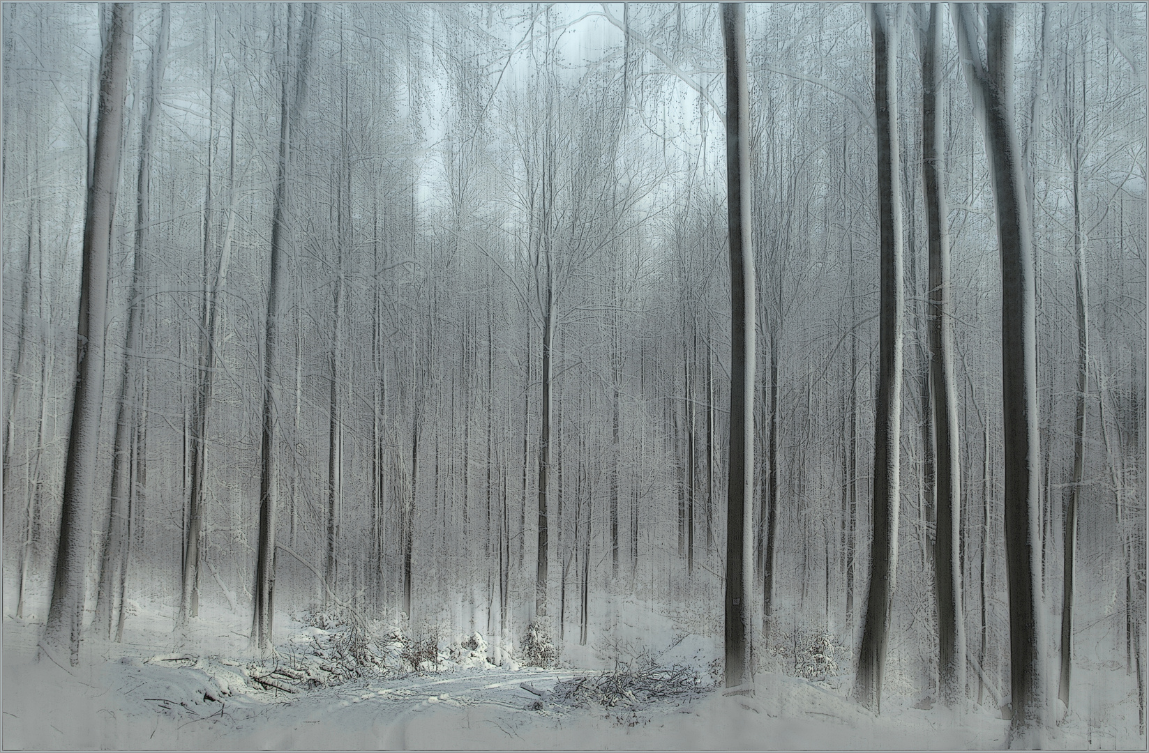 _ WinterZauber _