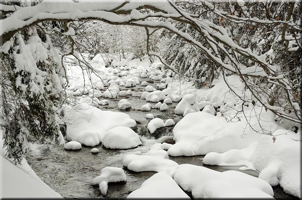 Winterzauber an der Elbequelle 5