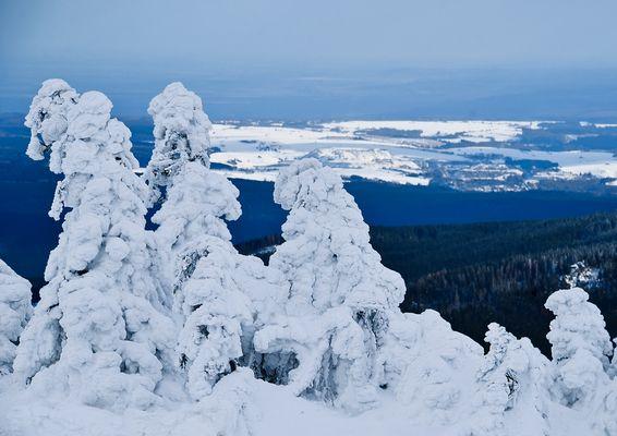 Winterzauber auf dem Brocken