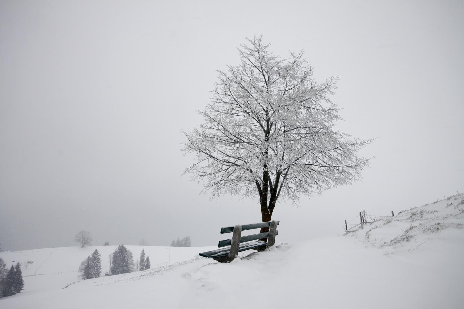 _Winterzauber_
