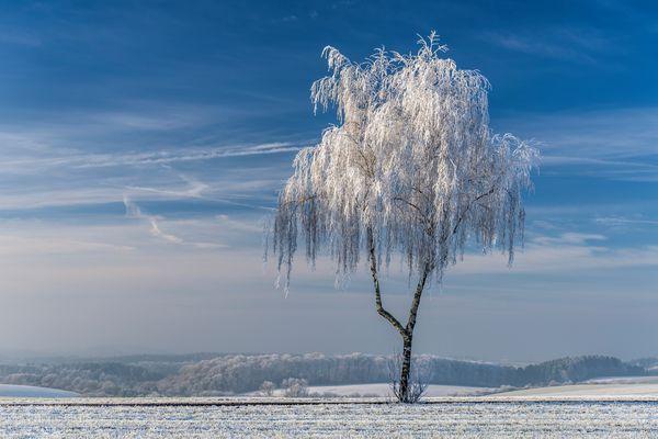 *Winterzauber II*