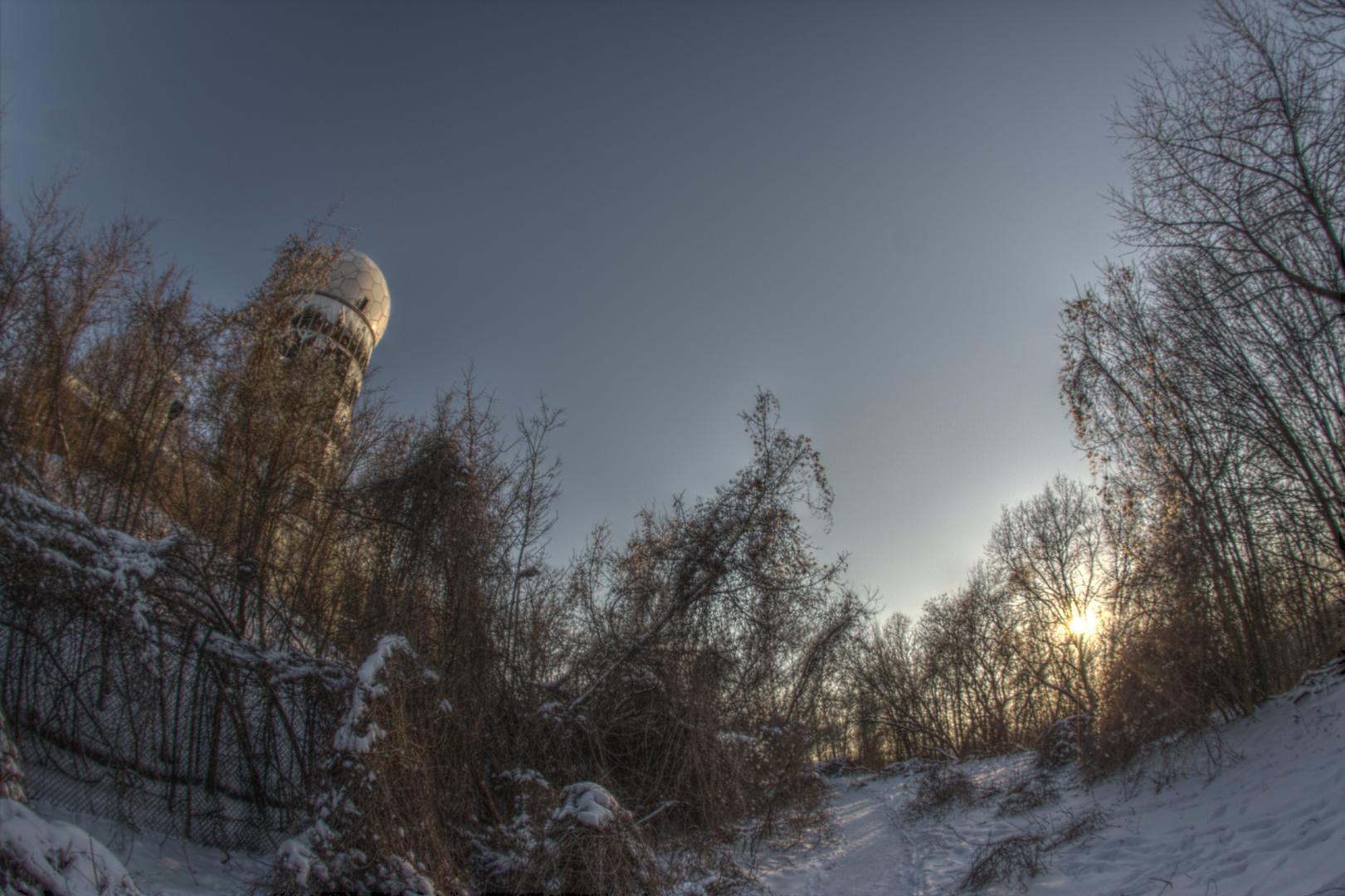 Winterzauber im Grunewald