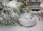 """Winter""""zauber"""" im März - aber jetzt langt's!"""