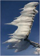 Winterzauber im Riesengebirge