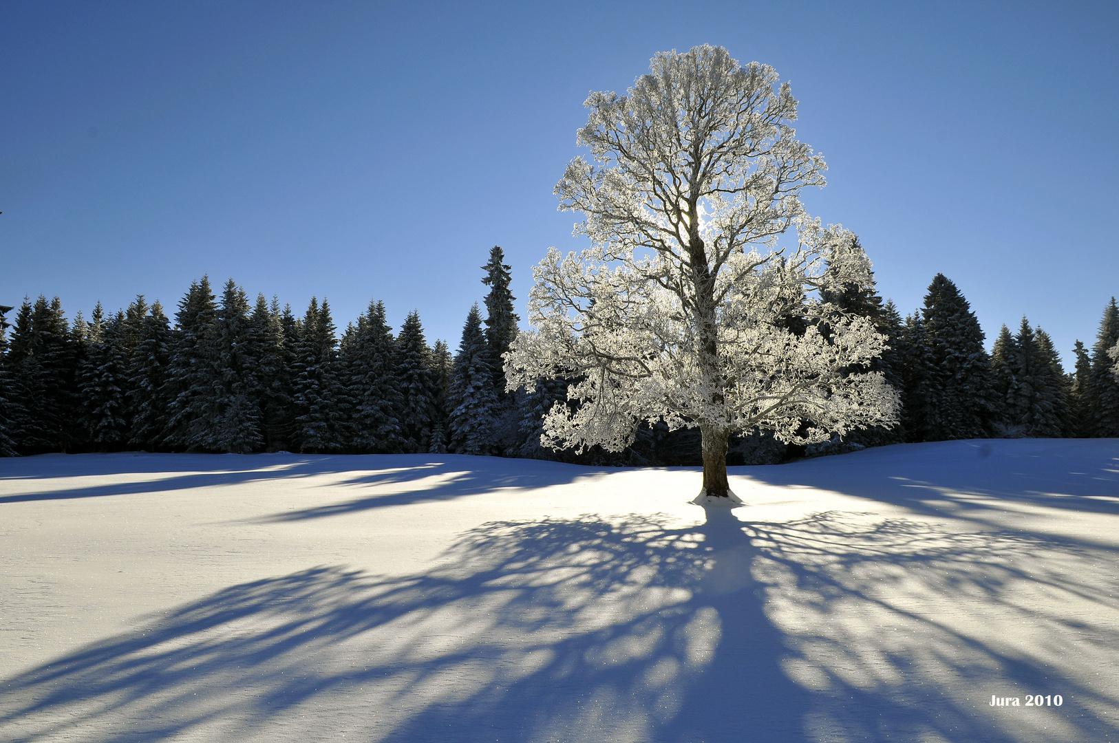 Winterzauber im Schweizer Jura Teil 6