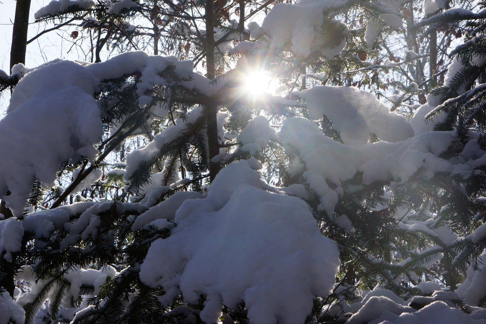 Winterzauber_09