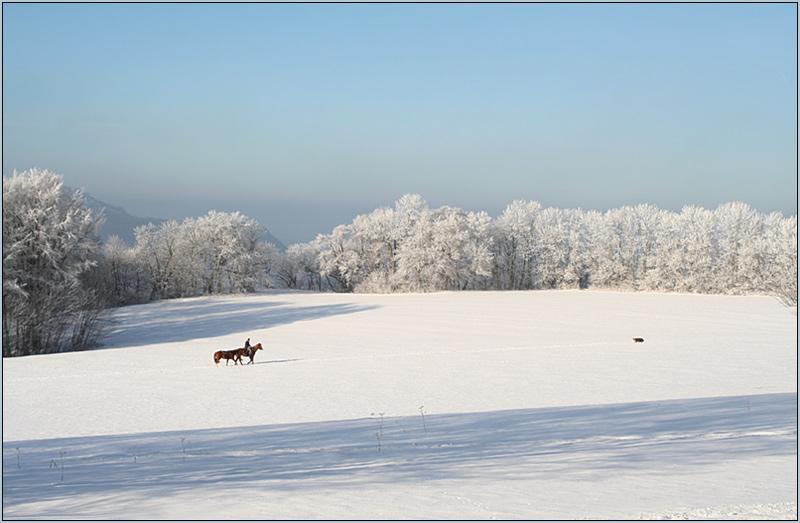 Winterzauberwelt