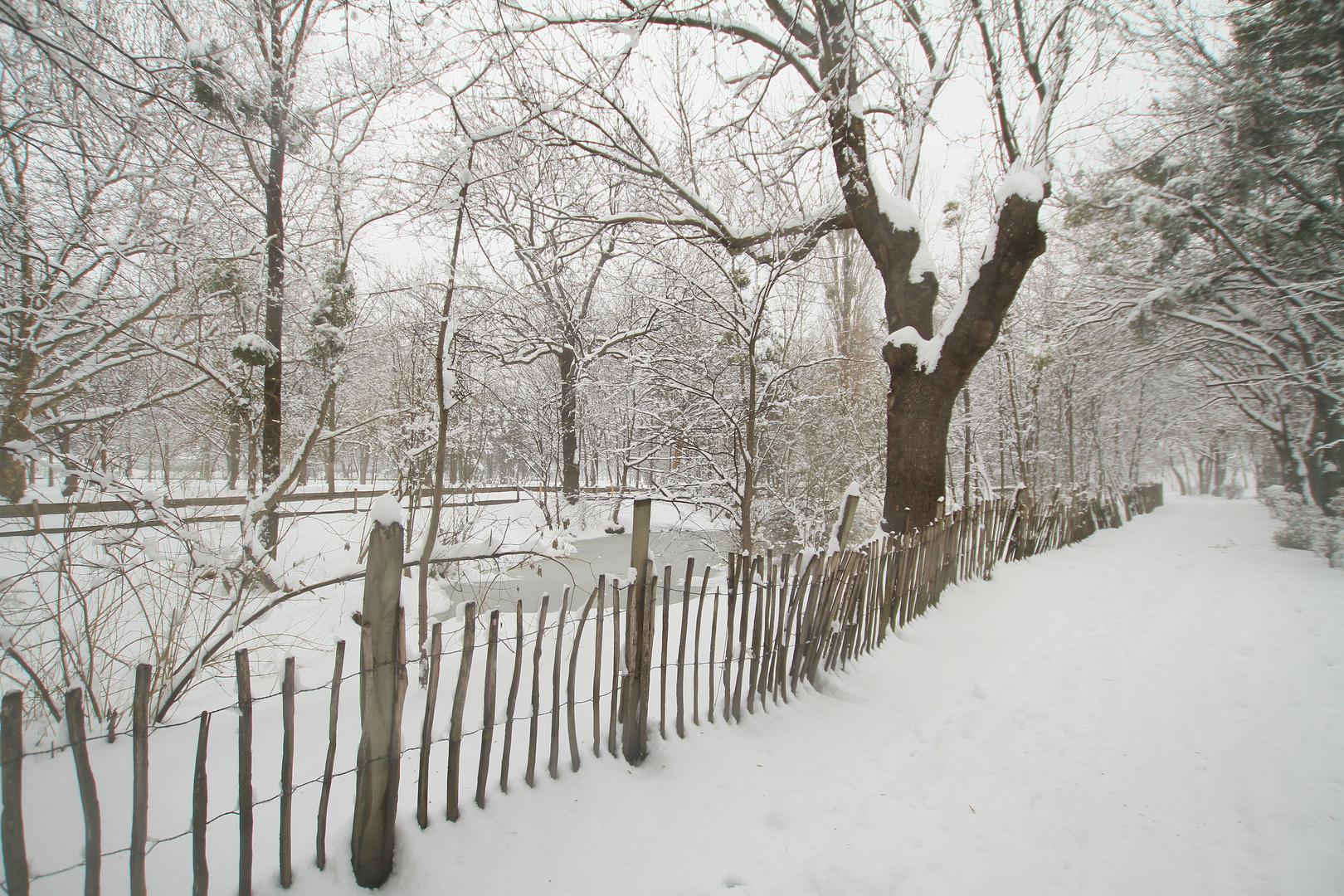 Winterzaun I
