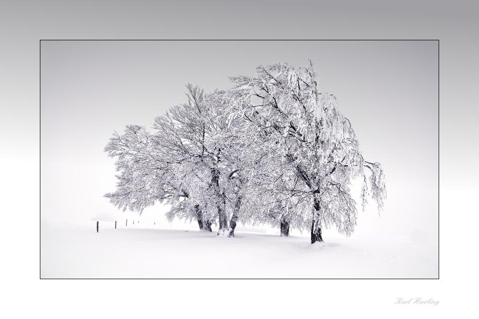 Winterzeit..
