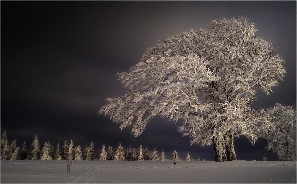 winterzeit foto bild jahreszeiten winter schnee bilder auf fotocommunity