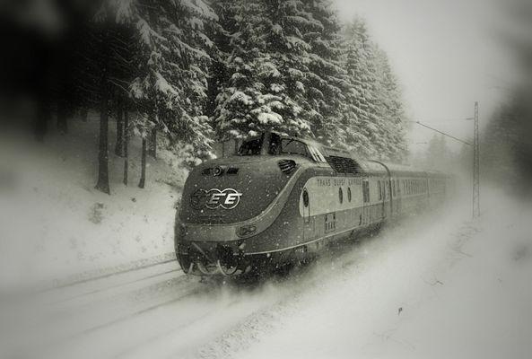 Winterzeit - Fotozeit - Fotoleiden