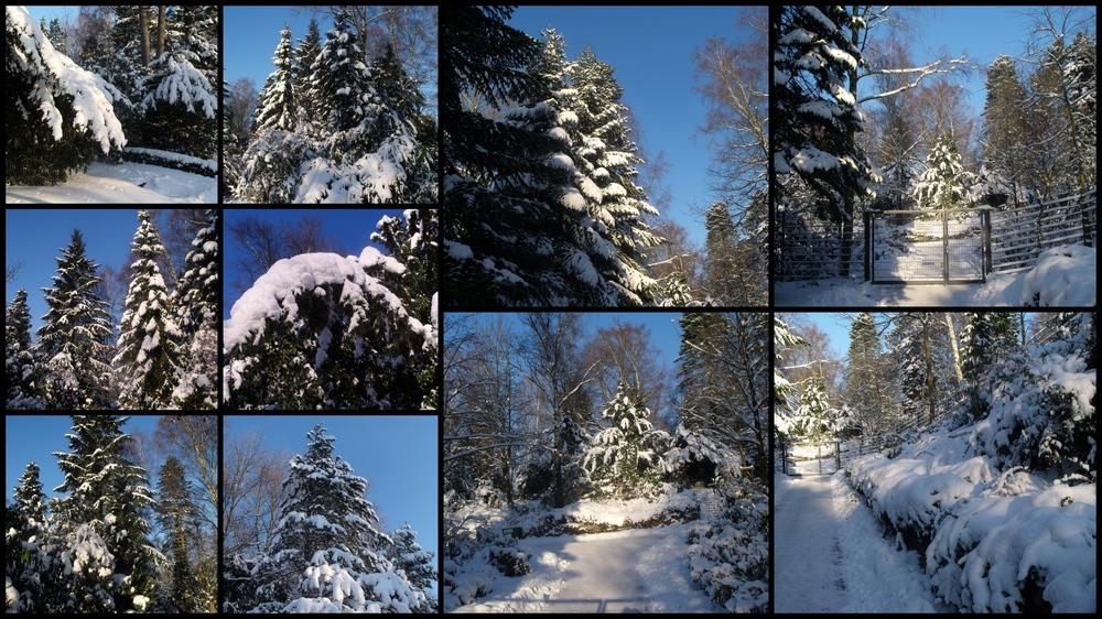 Winterzeit in Wentorf 02