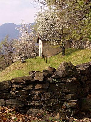 Winzerhütte im Tessin