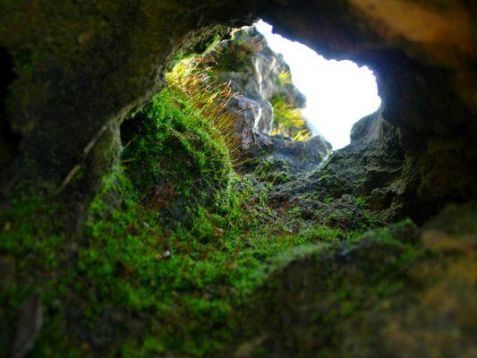 Winzige Höhle
