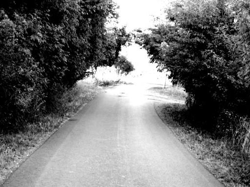 ..wir brauchen keine Ziele,wir sind der Weg...