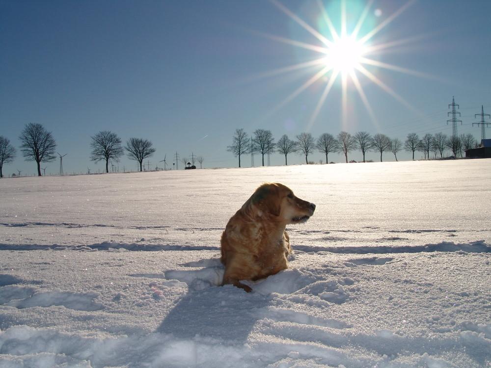 Wir haben einfach die Sonne und den Schnee genossen