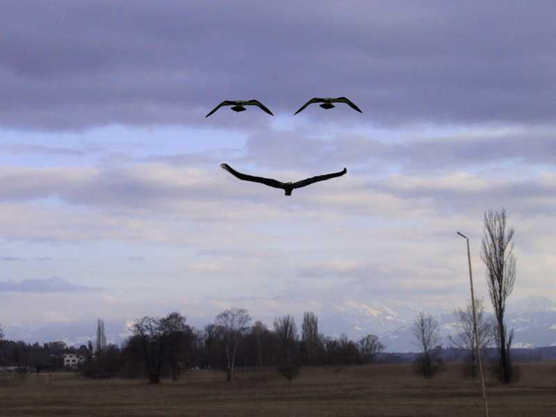 wir schenken euch ein Lächeln