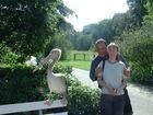Wir und der Pelikan....