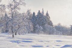 wirbelnder Schnee