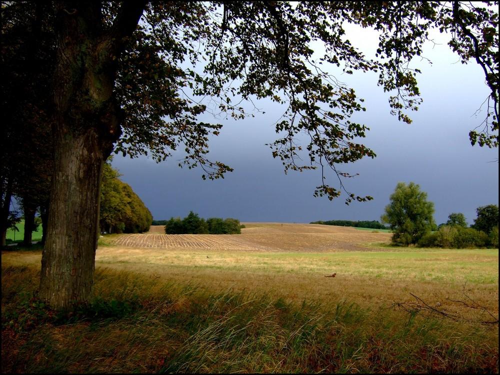 wird es Regen geben?