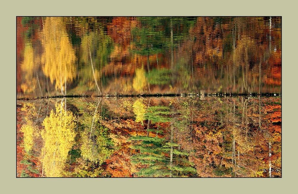 wirrer Herbst