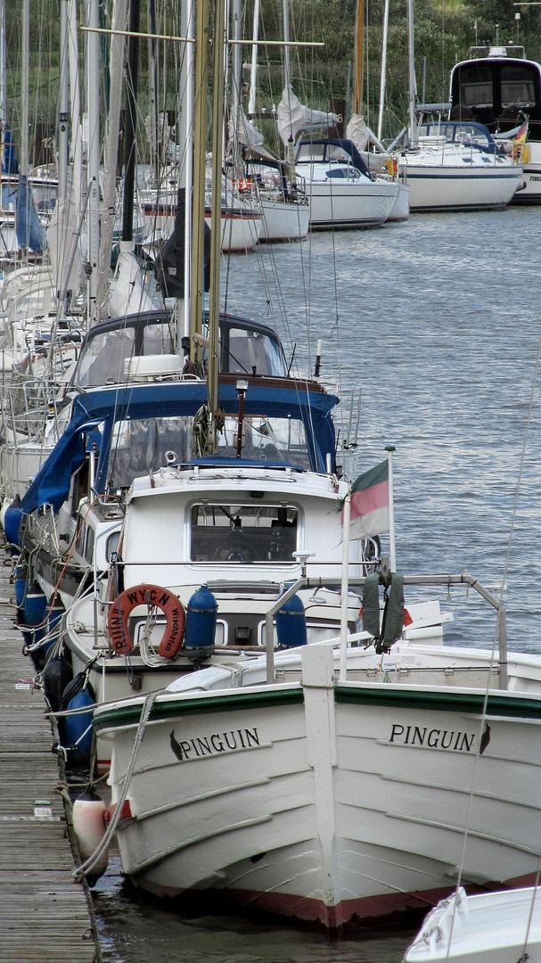 Wischhafen marina .....