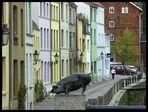 Wismar