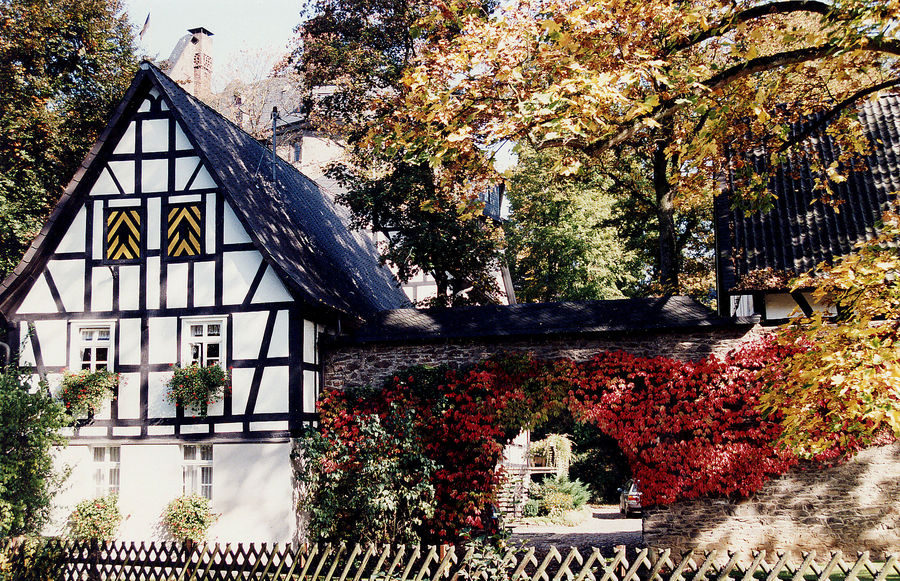 Wissen Schönstein im Herbst