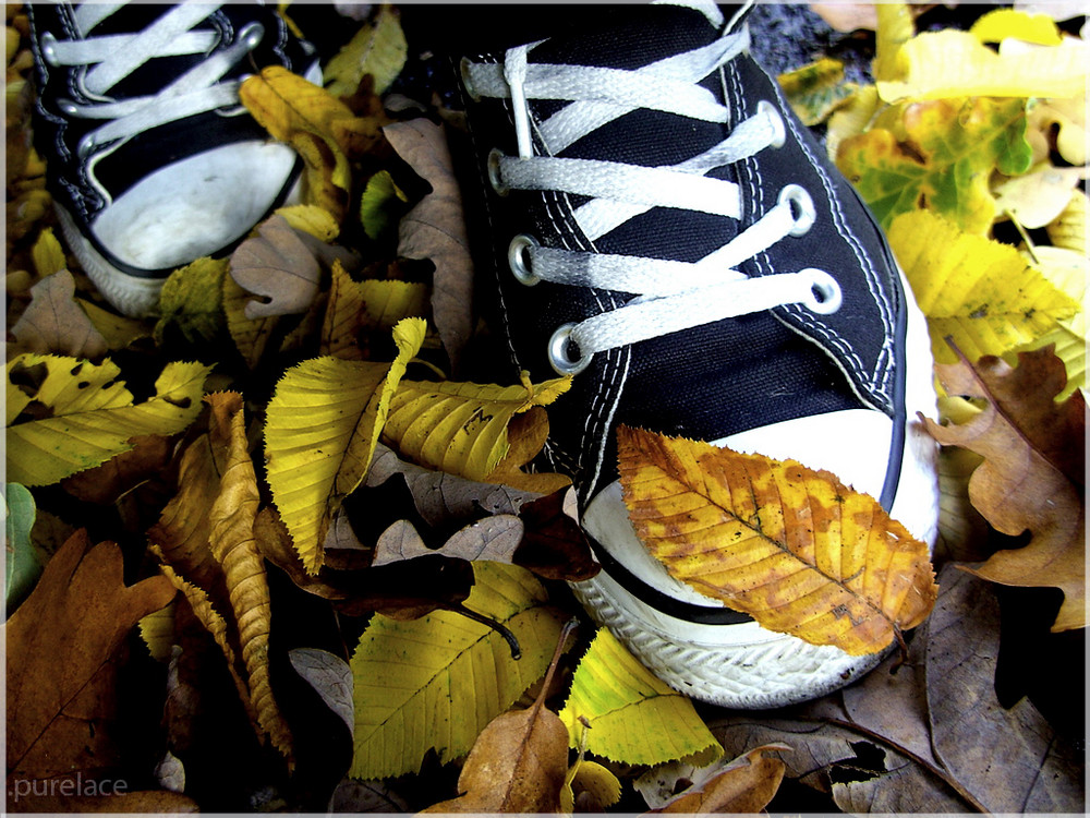 with converse.