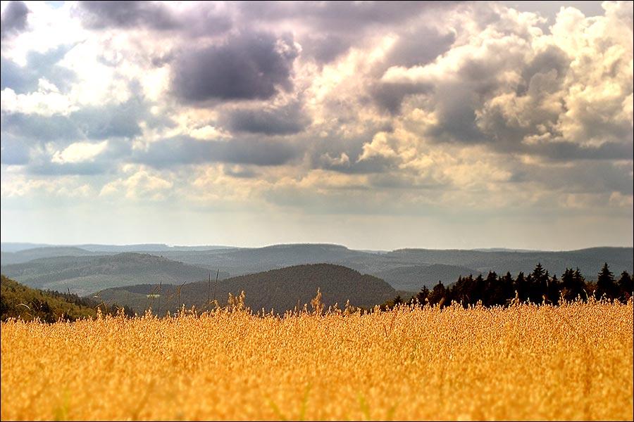 Wittgensteiner Höhen