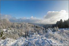 Wittgensteiner Winter