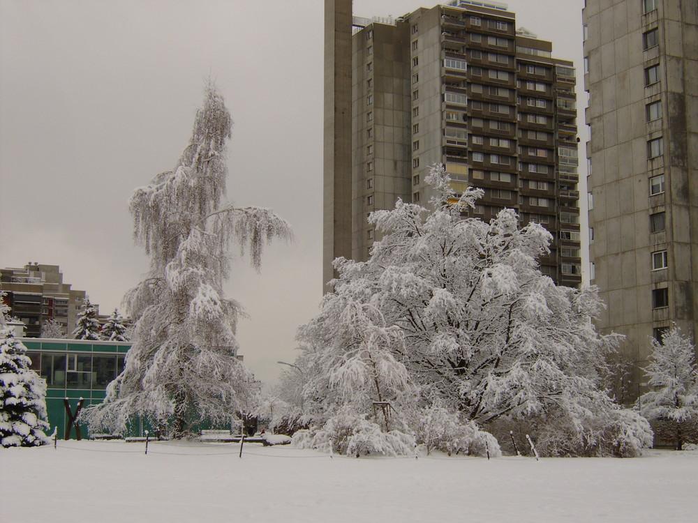 Wittikofen im Winter