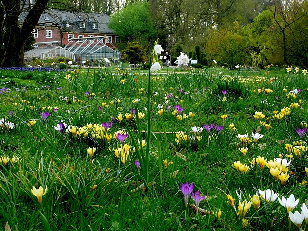 Wo bleibt der Frühling?