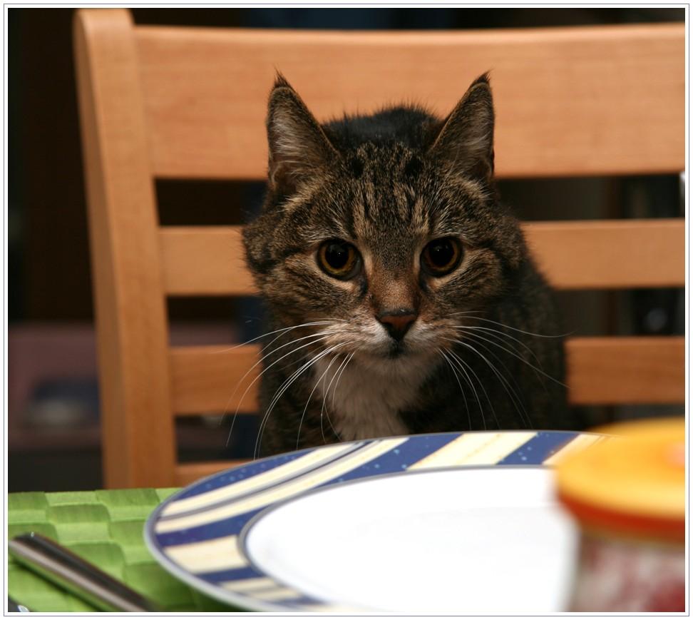Wo bleibt mein Essen?