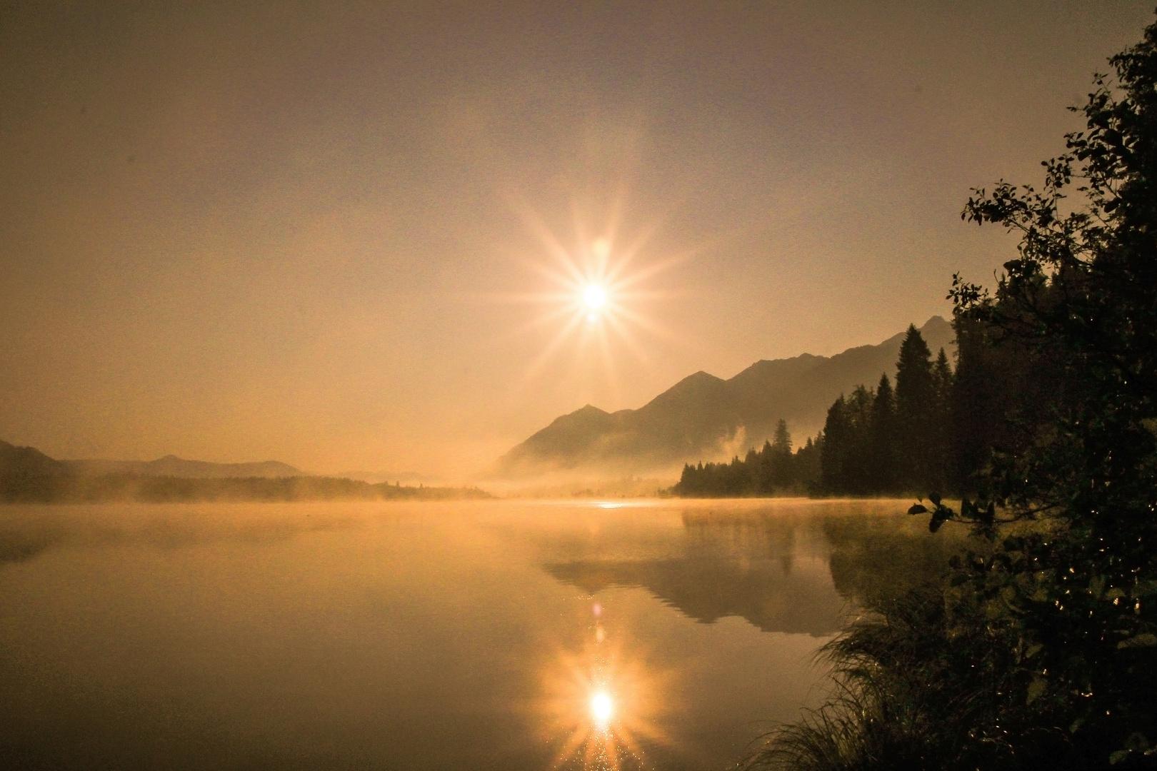 Wo die Sonne gegen den Nebel kämpft....