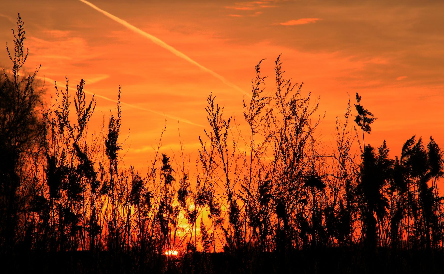 """""""Wo die Sonne sich Abends schlafen legt...!"""""""
