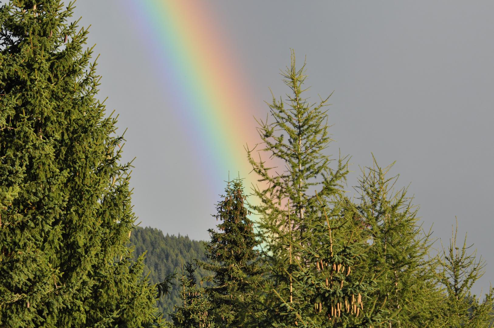 wo ein Regenbogen ist scheint die Sonne