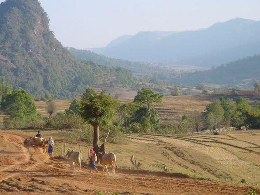 Wo es keine Zeit gibt ! Hochland Kalaw / Myanmar