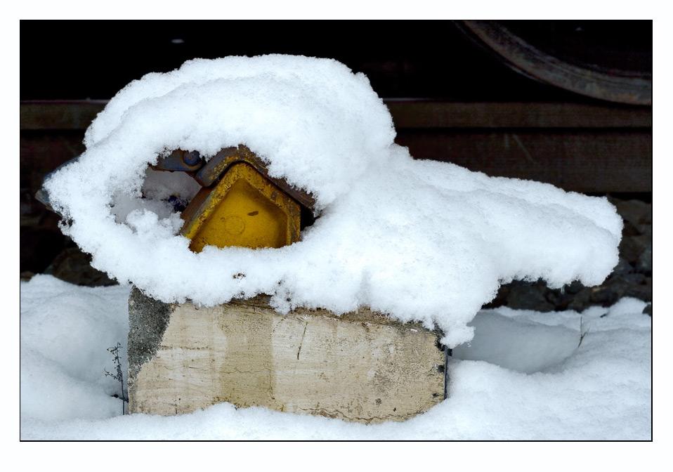 Wo gibt es eigentlich günstige Schneeschuhe?