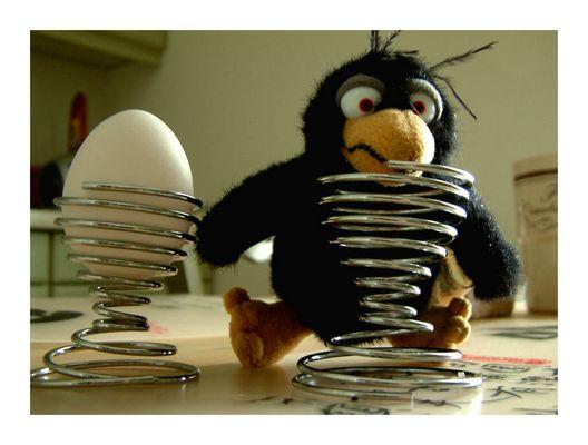 Wo ist das Ei? oder: Ode an Rudi ;-)