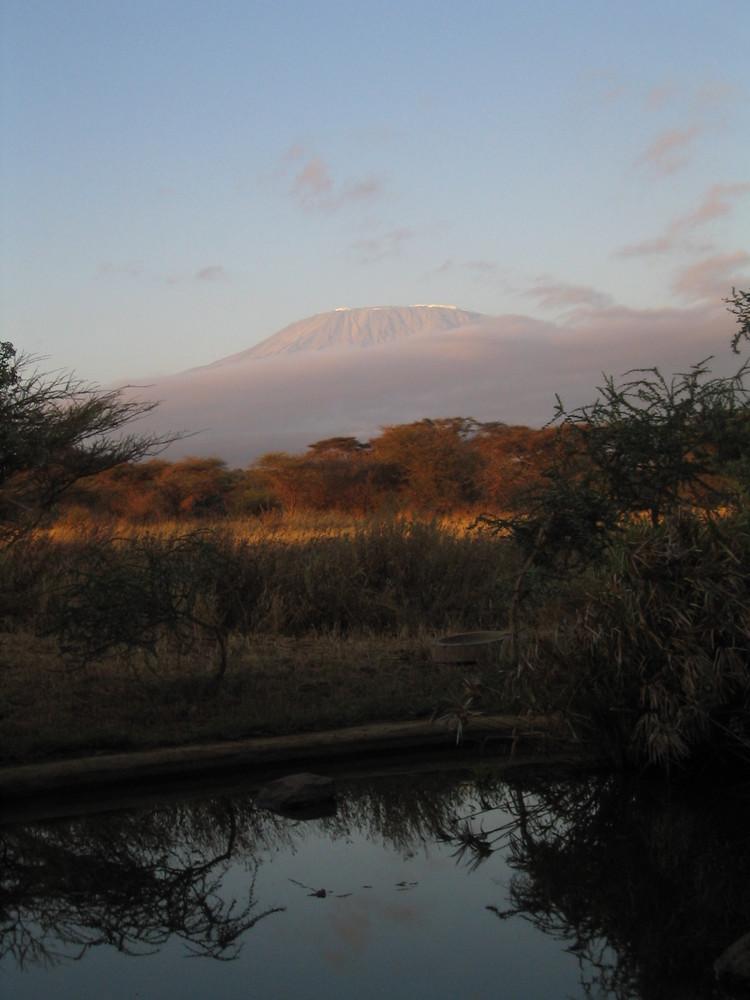 Wo ist der Schnee auf dem Kilimanjaro?
