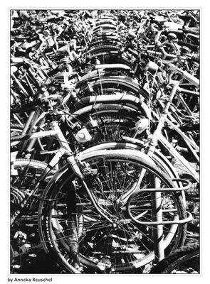 """""""Wo ist mein Fahrrad?"""""""