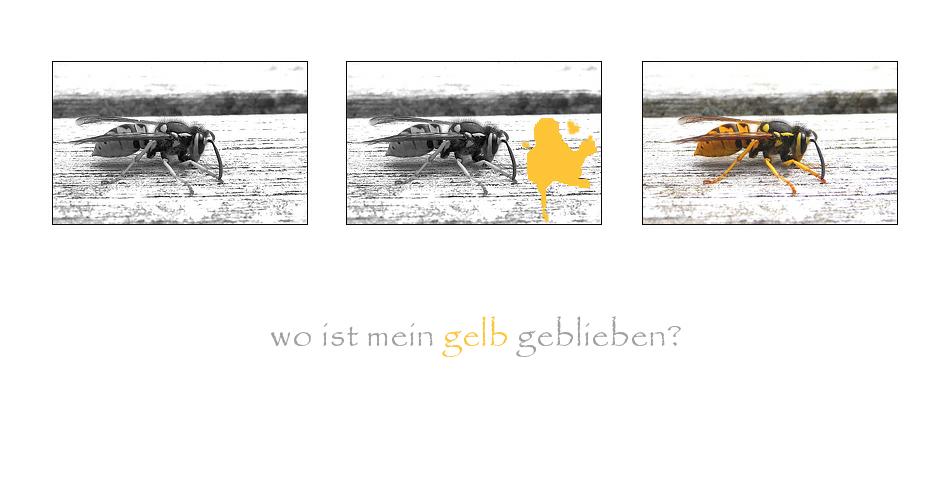 .wo ist mein gelb geblieben?.