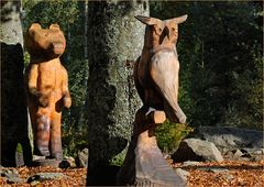 Wo sich Bär und Eule Gute Nacht sagen...
