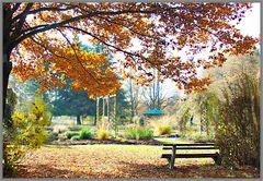 Wörishofener Park IV
